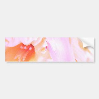 Daffodil Dreams Bumper Sticker