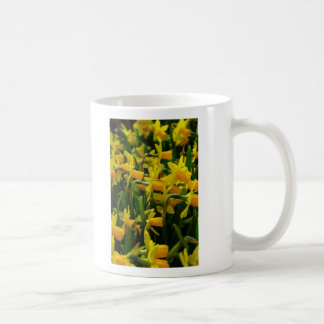 Daffodil Family Coffee Mug