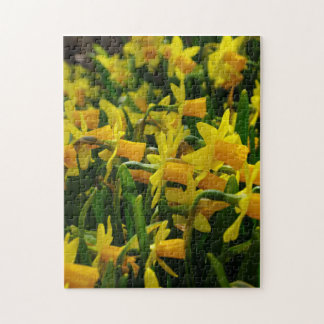 Daffodil Family Jigsaw Puzzle
