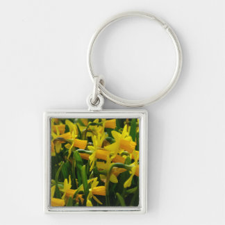Daffodil Family Key Ring
