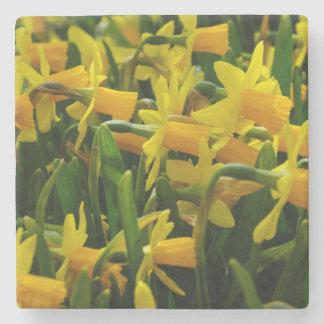 Daffodil Family Stone Coaster