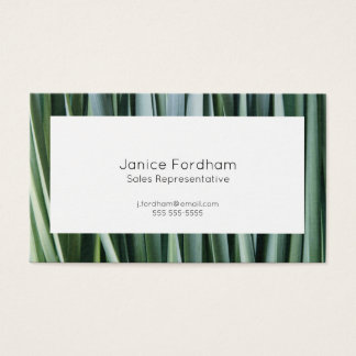 Daffodil foliage background business card