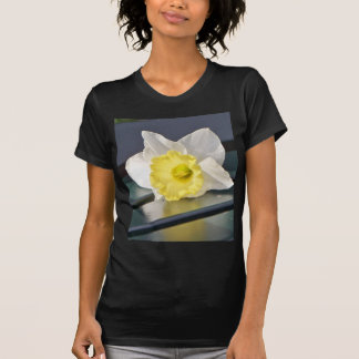 Daffodil on a Park Bench Tee Shirt