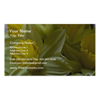 Daffodils Closeup flowers Business Cards