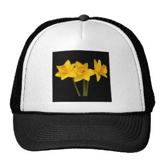 """""""Daffodils"""" Mesh Hats"""