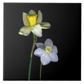 "Daffodils Large (6"" X 6"") Ceramic Photo Tile"