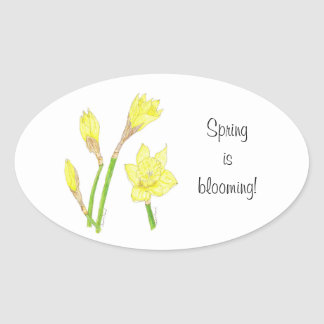 Daffodils (Narcissus) Spring is Blooming Sticker