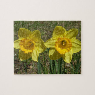 Daffodils Puzzle