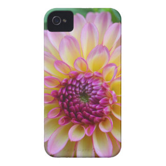 Dahlia Beauty Case-Mate iPhone 4 Case