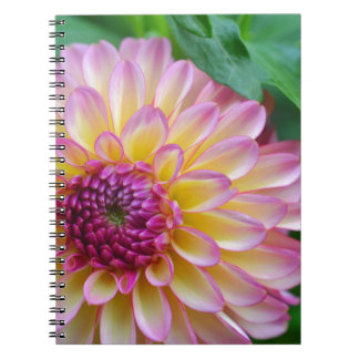 Dahlia Beauty Notebooks