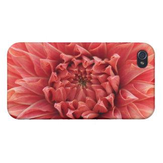dahlia cases for iPhone 4