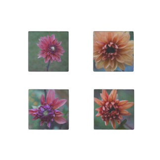 Dahlia Collection Stone Magnets