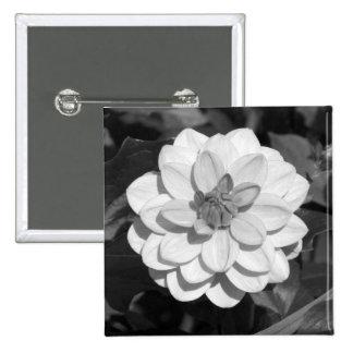 Dahlia 'David Howard'  B&W Pinback Button