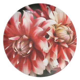 Dahlia Delight Melamine Plate