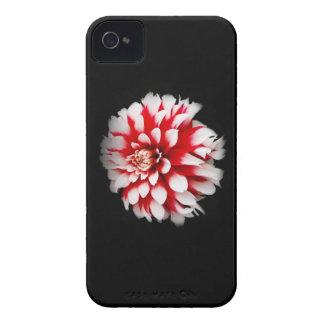 Dahlia iPhone 4 Case