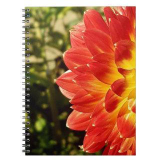 Dahlia Notebooks