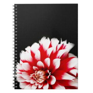 Dahlia on Black Background Notebook