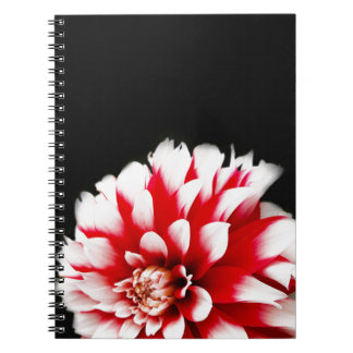 Dahlia on Black Background Spiral Notebook