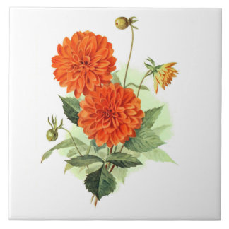 Dahlia 'Orange Fire King' Ceramic Tile