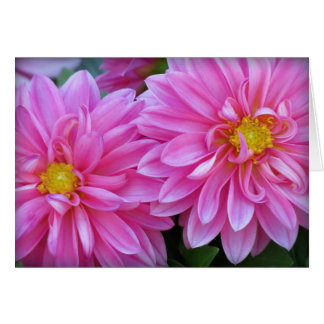 Dahlia Pair in Pink Card