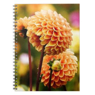 dahlia spiral note books
