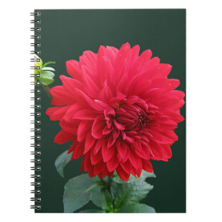 dahlia spiral notebooks