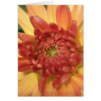 Dahlia: Yellow and Salmon --- Card