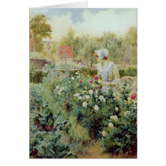 Dahlias, 1896 card