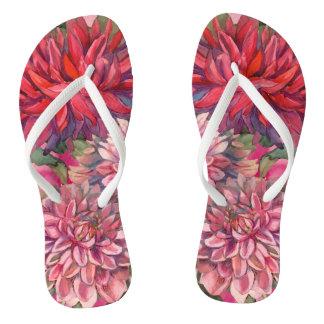 dahlias flowers thongs