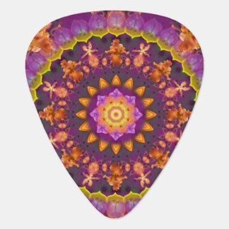 Daily Focus 4.29.17 Mandala Plectrum