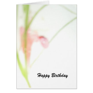 Dainty way to greet card