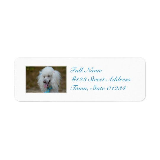 Dainty White Poodle Return Address Label