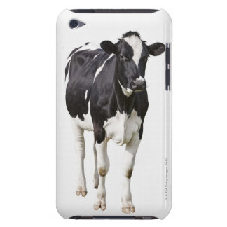 Dairy cow (Bos taurus) on white background Barely There iPod Cover