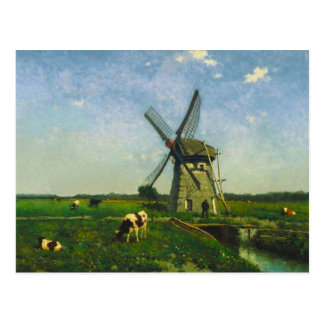 Dairy cows grazing by a windmill postcard