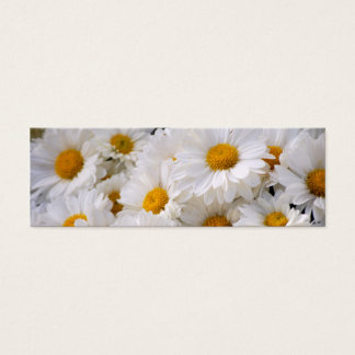 Daisies Abound [Skinny] Mini Business Card