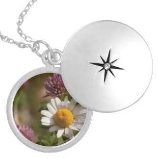 Daisies and Clover; No Text Round Locket Necklace