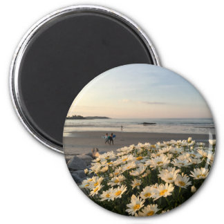 Daisies and Surfers on Higgins Beach Magnet