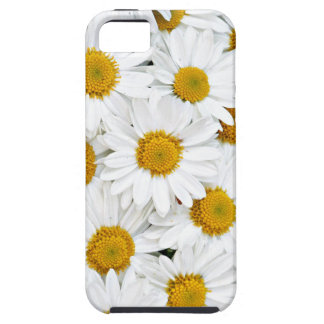 Daisies iPhone 5 Covers