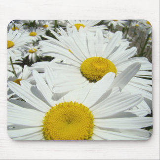 Daisies Flowers mousepad White Daisy gifts