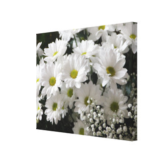 Daisies Gallery Wrapped Canvas