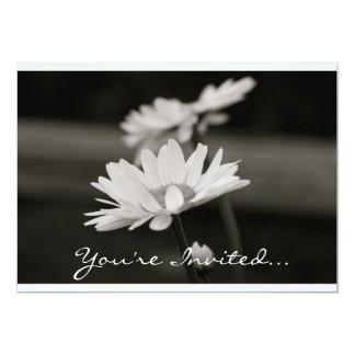 Daisies in Black and White 13 Cm X 18 Cm Invitation Card