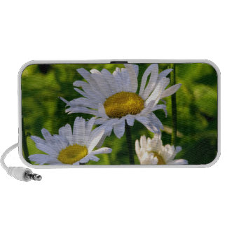 Daisies in the garden fun colorful summer photo mini speakers