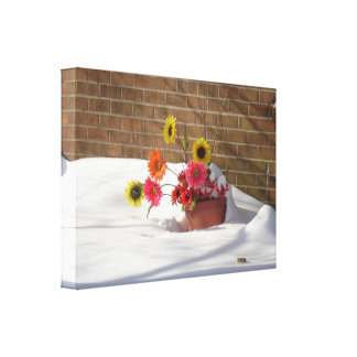 Daisies In The Snow Stretched Canvas Print