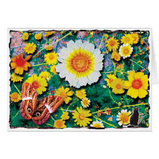Daisies May Greeting Card