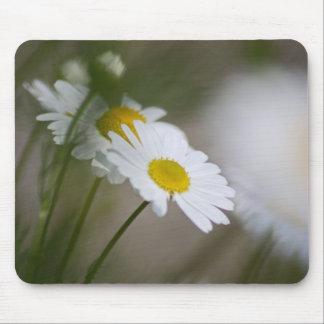 Daisies Mousepads
