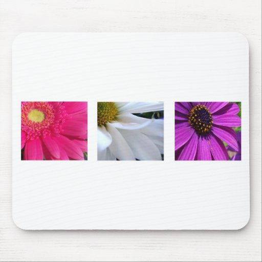 Daisies Mouse Pads