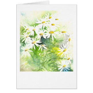 Daisies on green card