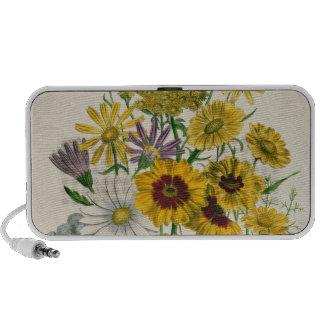 Daisies, plate 31 from 'The Ladies' Laptop Speakers