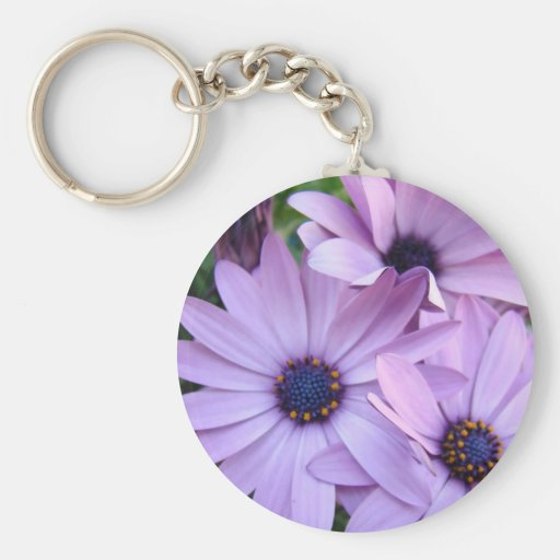 DAISIES Purple Pink Daisy 1 Cards Gifts Mugs Key Chains