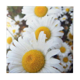 Daisies Small Square Tile